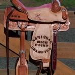 A Cowgirls Saddle!